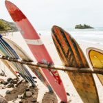 Best Surfboards 2019 – Learning About all Types and Buying Guide